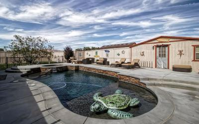 Apple Valley Single Family Home For Sale: 13871 Olema Road