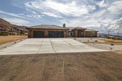 Apple Valley Single Family Home For Sale: 17071 Century Plant Road