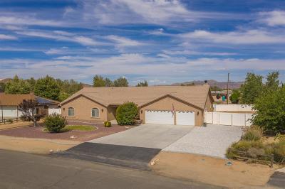 Apple Valley Single Family Home For Sale: 19967 E Haida Road