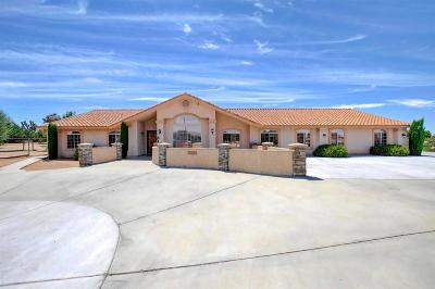 Hesperia Single Family Home For Sale: 17320 Las Lunas Street