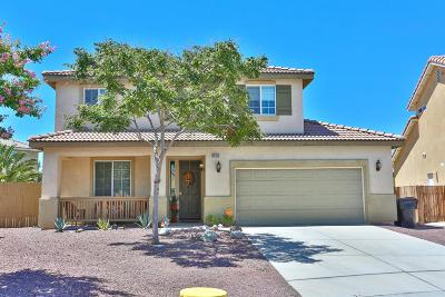 Victorville Single Family Home For Sale: 13152 Choctaw Lane