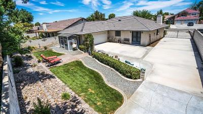 Victorville Single Family Home For Sale: 13120 Caspian Drive