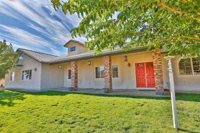 Apple Valley Single Family Home For Sale: 25025 Little Teepee Road