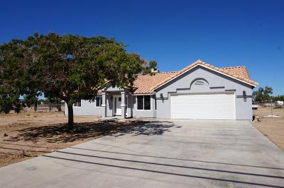 Hesperia Single Family Home For Sale: 10424 3rd Avenue