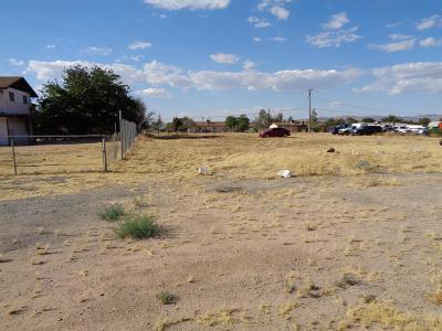 Apple Valley Residential Lots & Land For Sale: Andes Trail