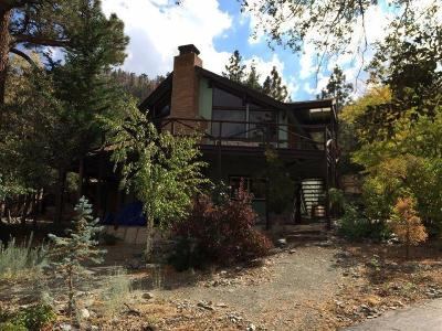 Wrightwood Single Family Home For Sale: 5264 Desert View Lane