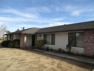 Hesperia Single Family Home For Sale: 8919 Evergreen Avenue