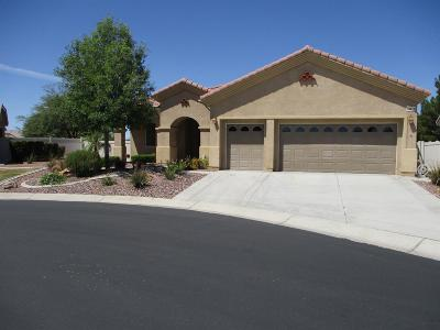 Apple Valley Single Family Home For Sale: 10414 Lanigan Road