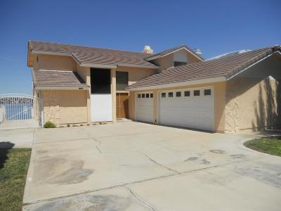 Victorville Single Family Home For Sale: 13300 Sea Gull Drive