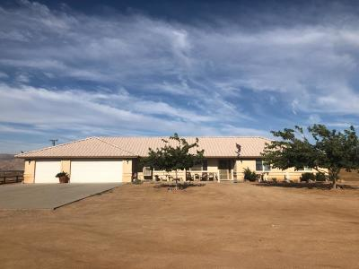 Apple Valley Single Family Home For Sale: 11283 Tecopa Road