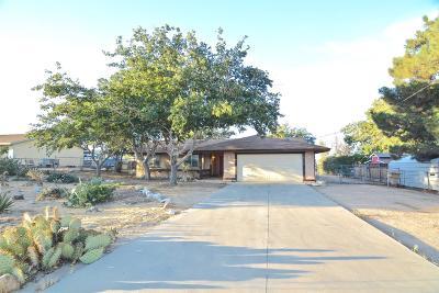 Hesperia Single Family Home For Sale: 18738 Yucca Street