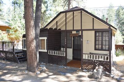 Wrightwood Single Family Home For Sale: 1494 Laura Street