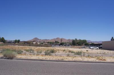 Apple Valley CA Commercial Lots & Land For Sale: $87,000