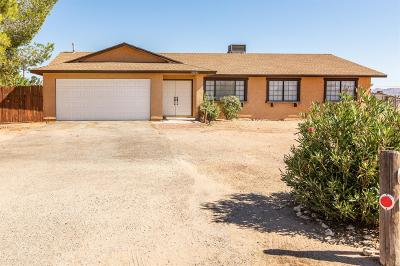 Apple Valley Single Family Home For Sale: 20992 Thunderbird Road