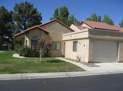 Apple Valley Single Family Home For Sale: 19218 Elm Drive