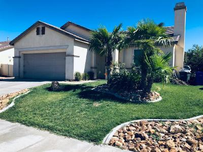 Adelanto Single Family Home For Sale: 11757 Galewood Street
