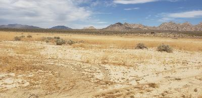 Lucerne Valley CA Residential Lots & Land For Sale: $10,000