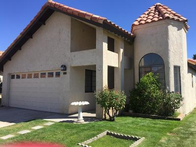 Apple Valley Single Family Home For Sale: 19237 Palm Way