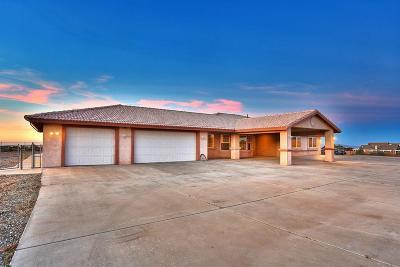 Oak Hills Single Family Home For Sale: 10423 Farmington Street