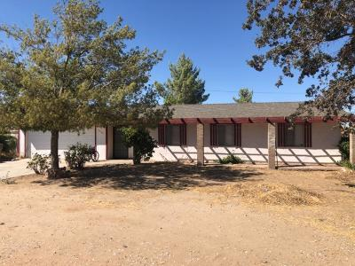 Hesperia Single Family Home For Sale: 16144 Vine Street