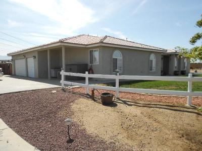 Oak Hills Single Family Home For Sale: 10171 Farmington Street