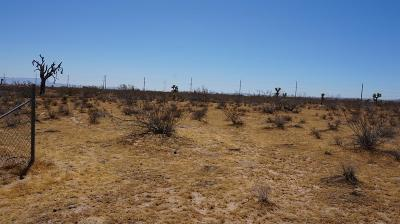 Phelan Residential Lots & Land For Sale: Arizona Avenue