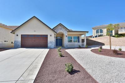 Victorville Single Family Home For Sale: 17795 Sunburst Road