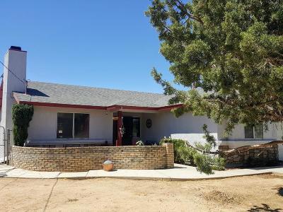 Hesperia Single Family Home For Sale: 6950 Jenkins Avenue