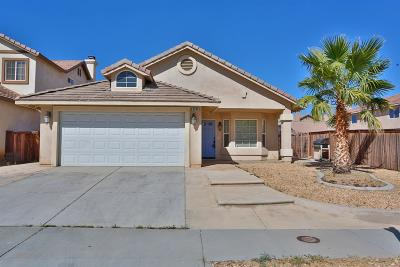 Hesperia Single Family Home For Sale: 9246 Canyon View Avenue