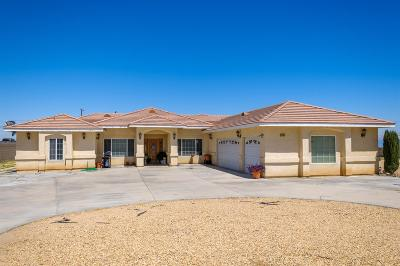 Victorville Single Family Home For Sale: 14090 Anacapa Road