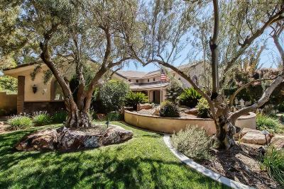 Apple Valley Single Family Home For Sale: 19151 Glenbrook Circle
