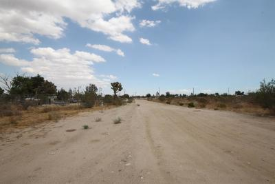 Phelan Residential Lots & Land For Sale: Del Rosa Road