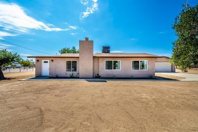 Hesperia Single Family Home For Sale: 9780 Locust Avenue