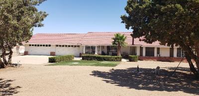 Oak Hills Single Family Home For Sale: 8925 Macron Street