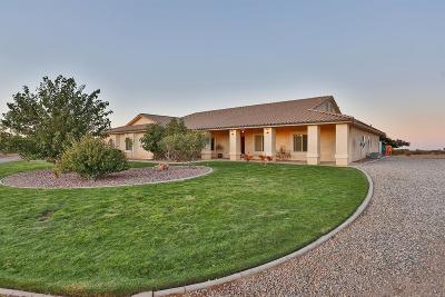 Phelan Single Family Home For Sale: 8575 Capelin Road
