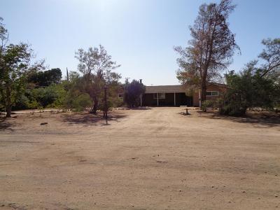 Apple Valley Single Family Home For Sale: 9460 Manzanita Street