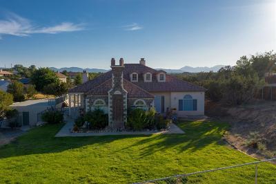 Hesperia Single Family Home For Sale: 6910 Jenkins Avenue