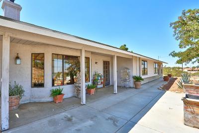 Oak Hills Single Family Home For Sale: 10939 Adobe Road