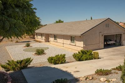 Hesperia Single Family Home For Sale: 18640 Verano Street