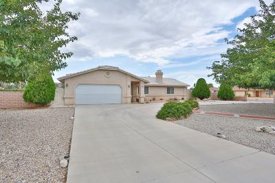 Apple Valley Single Family Home For Sale: 21145 Geronimo Road