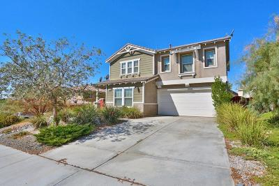 Victorville Single Family Home For Sale: 16984 Grand Mammoth Place