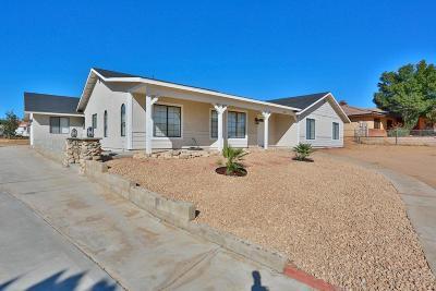 Hesperia Single Family Home For Sale: 7596 Arcadia Avenue
