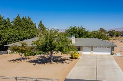 Hesperia Single Family Home For Sale: 9969 Arroyo Avenue