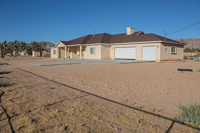 Apple Valley Single Family Home For Sale: 16691 Corto Road