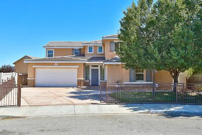 Victorville Single Family Home For Sale: 13445 Ganesta Court
