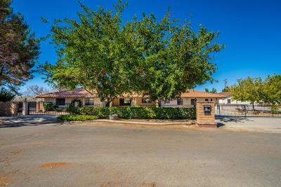 Apple Valley Single Family Home For Sale: 14662 Riverside Road