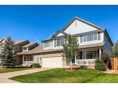 Single Family Home Sold: 295 Ponderosa Street
