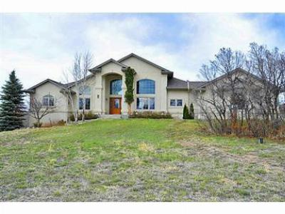 Castle Rock CO Single Family Home Sold: $699,000