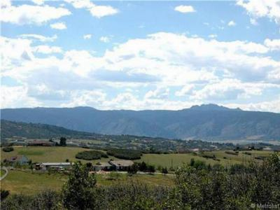 Castle Rock CO Residential Lots & Land Sold: $275,000