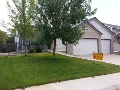 Single Family Home Sold: 5337 South Valdai Way